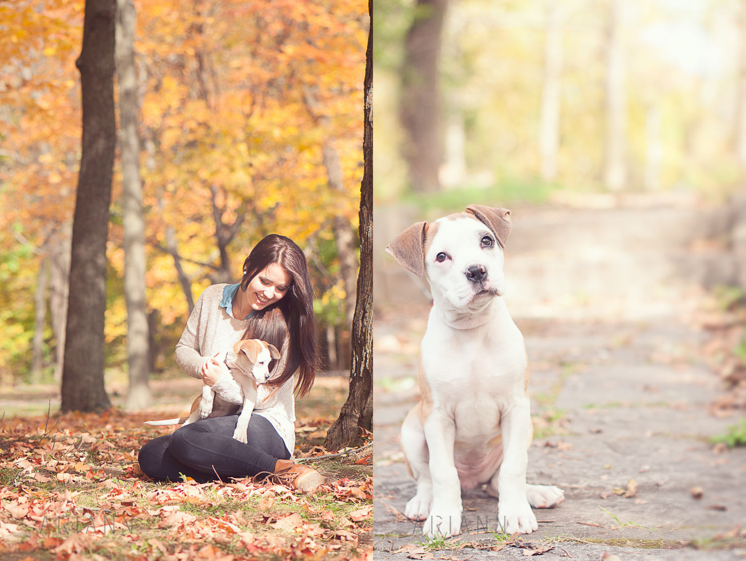 portrait photography with puppy